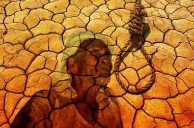 A POLICY BRIEF FOR FARMERS' ORGANISATIONS AND ACTIVISTS -—B. Sivaraman